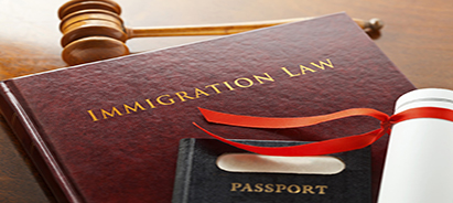 Immigration Attorneys